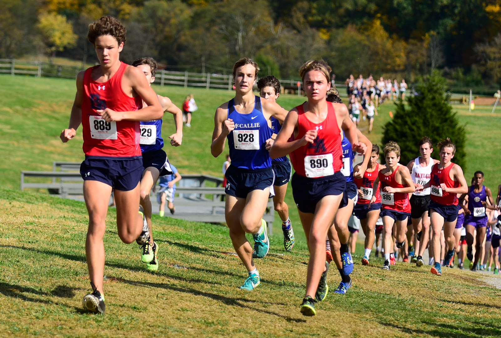 tssaa cross country meet